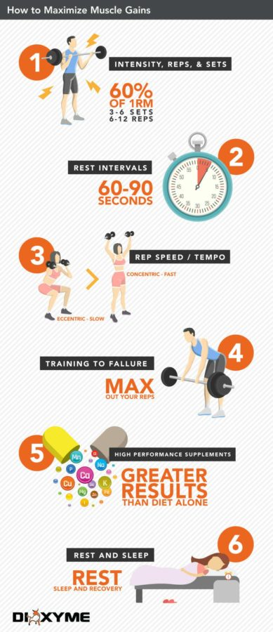 How to Maximize Muscle Gains Infographic by Dioxyme