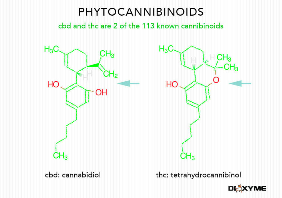 chemical structure cbd and thc