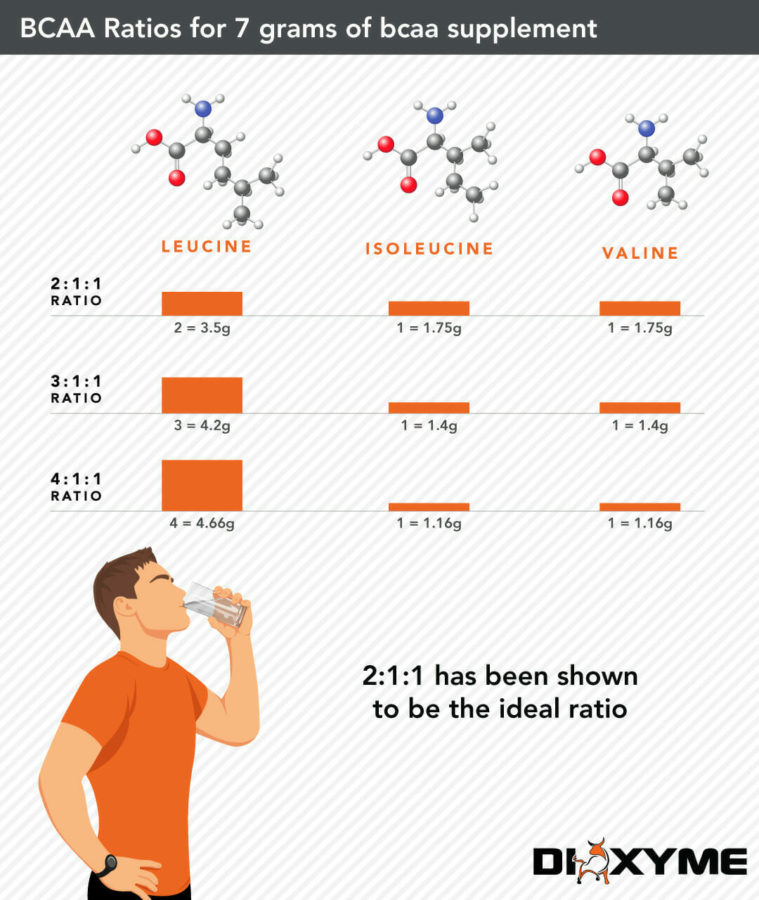 BCAA Ratio Infographic by Dioxyme
